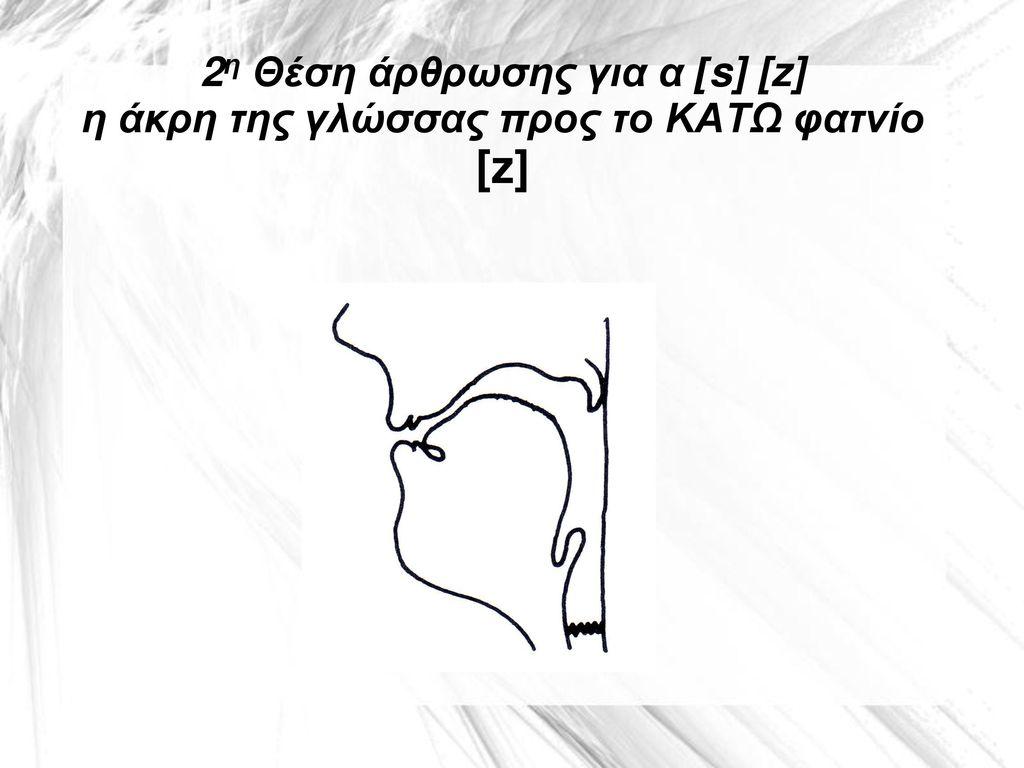 2η Θέση άρθρωσης για α [s] [z] η άκρη της γλώσσας προς το ΚΑΤΩ φατνίο [z]